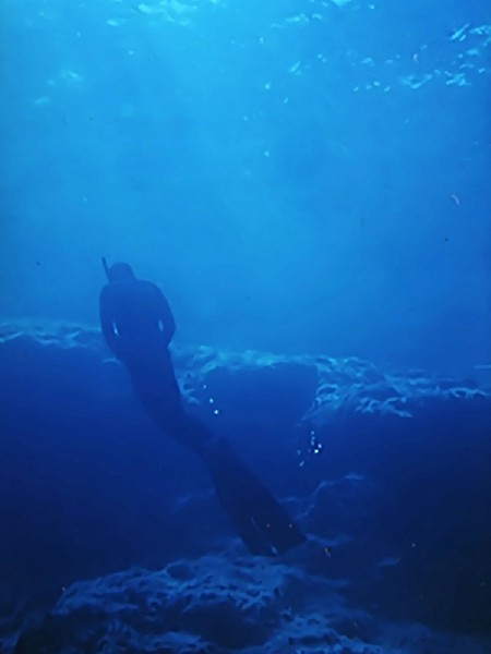 ABYSS  Freediver